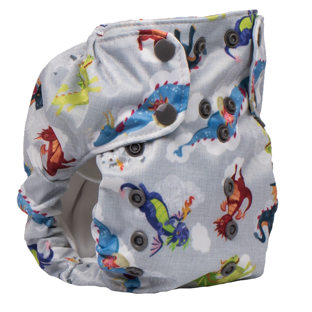 Smart Bottoms Dream Diaper 2.0 All-in-One