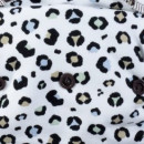 Spots on White